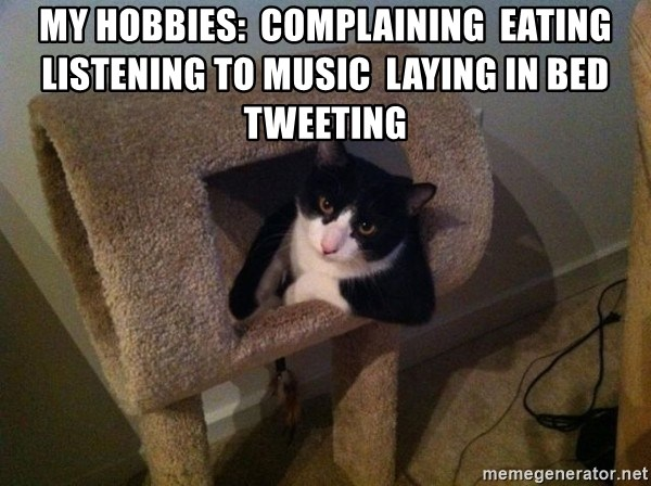 cool cat - My hobbies:  Complaining  Eating  Listening to music  Laying in bed  Tweeting