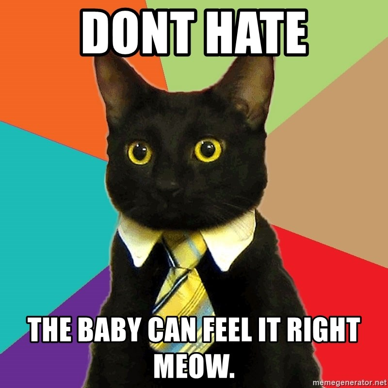 Business Cat - DONT HATE THE BABY CAN FEEL IT RIGHT MEOW.