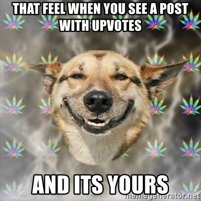 Stoner Dog - that feel when you see a post with upvotes and its yours