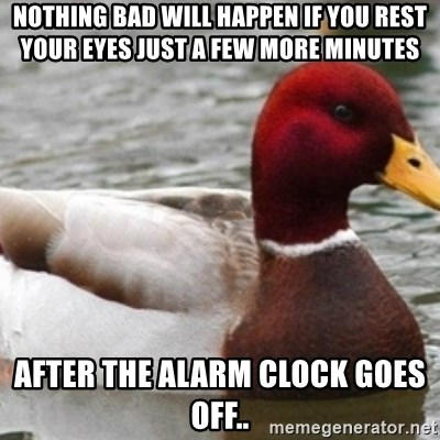 Bad Advice Mallard - Nothing bad will happen if you rest your eyes just a few more minutes After the alarm clock goes off..