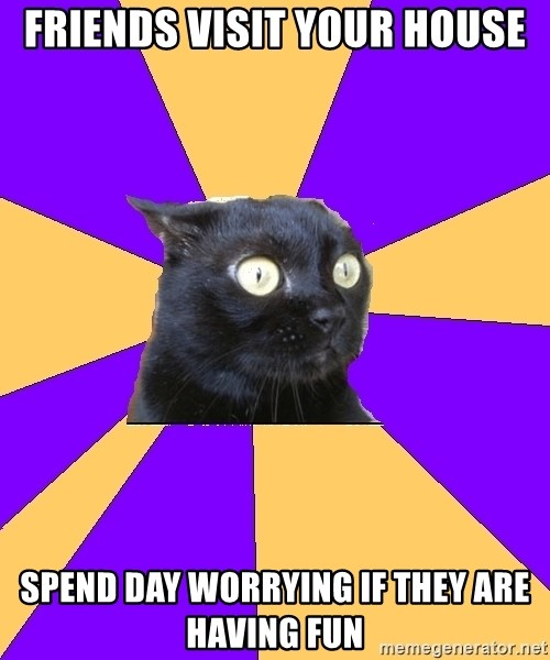 Anxiety Cat - friends visit your house spend day worrying if they are having fun