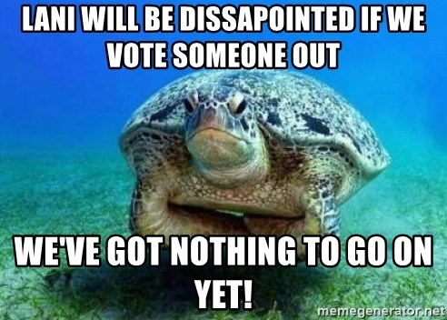 disappointed turtle - Lani will be dissapointed if we vote someone out we've got nothing to go on yet!