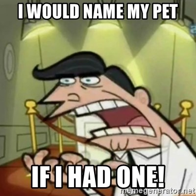 If i had one - I would name my pet if i had one!