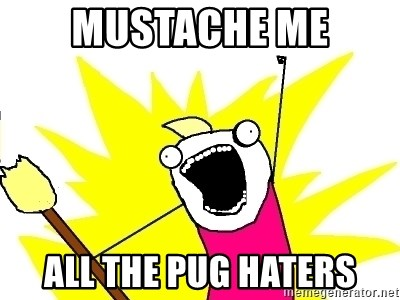X ALL THE THINGS - mustache me all the pug haters