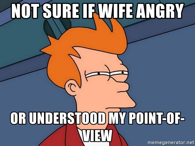 Futurama Fry - not sure if wife angry or understood my point-of-view
