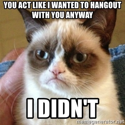 Grumpy Cat  - You act like I wanted to hangout with you anyway I didn't