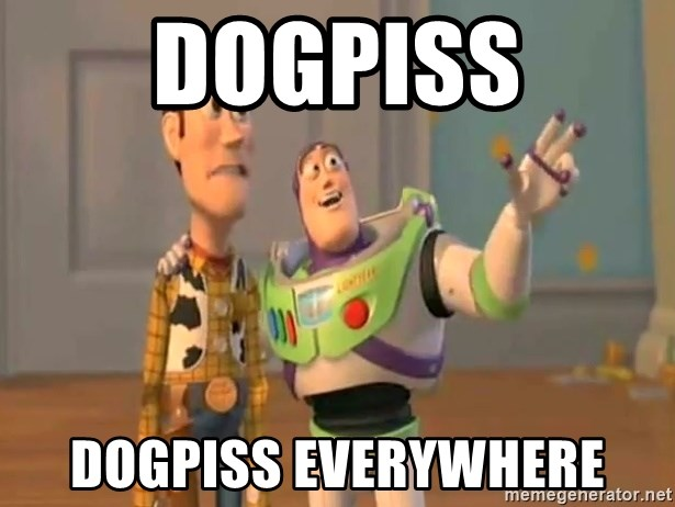 X, X Everywhere  - Dogpiss dogpiss everywhere