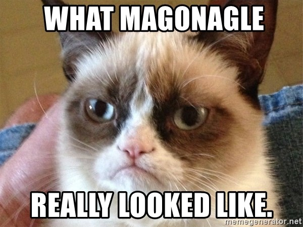 Angry Cat Meme -  WHAT MAGONAGLE  REALLY LOOKED LIKE.