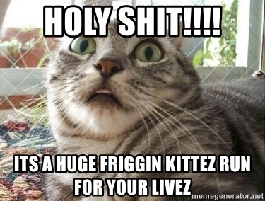 scared cat - HOLY SHIT!!!! Its a huge friggin kittez RUN FOR YOUR LIVEZ