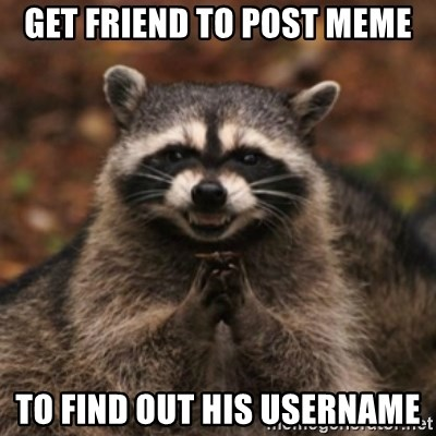 evil raccoon - Get friend to post meme To find out his username
