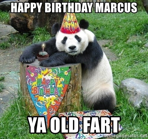 Happy Birthday Panda - Happy birthday Marcus Ya old fart