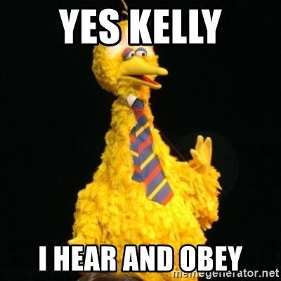 Political Big Bird - Yes kelly I hear and obey