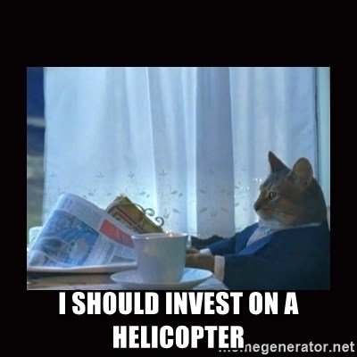 i should buy a boat cat -  I should invest on a helicopter
