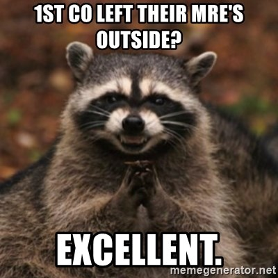 evil raccoon - 1st co left their mre's outside? excellent.