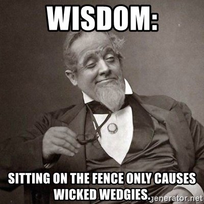 1889 [10] guy - Wisdom: Sitting on the fence only causes wicked wedgies.