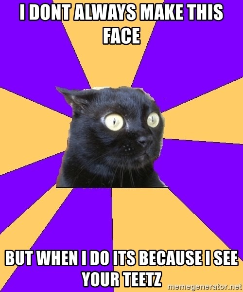 Anxiety Cat - i dont always make this face but when i do its because i see your teetz