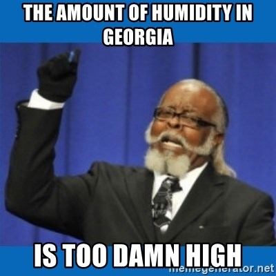 Too damn high - the amount of humidity in georgia is too damn high