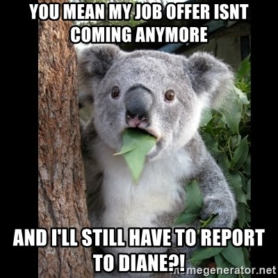 Koala can't believe it - You mean my job offer isnt coming anymore And I'll still have to report to Diane?!