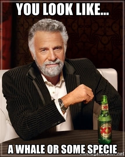 The Most Interesting Man In The World - You look like... A whale or some specie