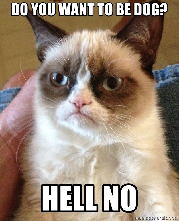 Grumpy Cat Face - do you want to be dog? hell NO