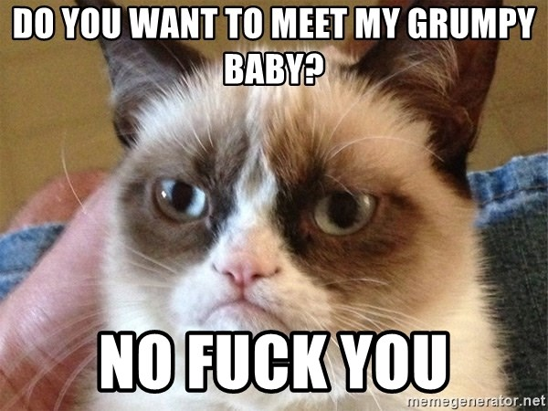 Angry Cat Meme - DO YOU WANT TO MEET MY GRUMPY BABY? NO FUCK YOU