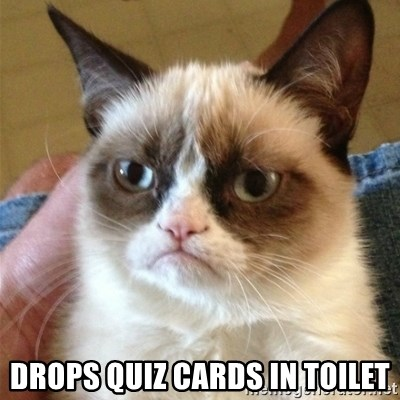 Grumpy Cat  -  drops quiz cards in toilet
