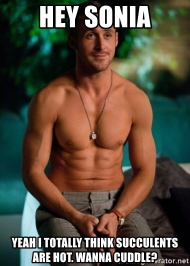 Shirtless Ryan Gosling - Hey Sonia Yeah I totally think succulents are hot. Wanna cuddle?