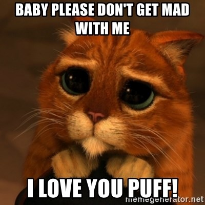 39747154 baby please don't get mad with me i love you puff! shrek cat v1,Don T Get Mad Meme