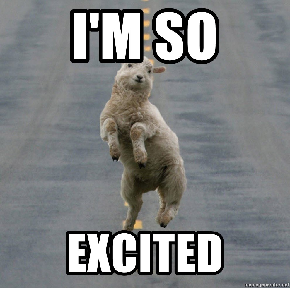 Excited Sheep - I'm so excited