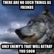 wolf banderson - There are no such things as freinds Only enemy's that will betray you soon