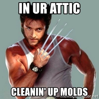 Wolverine - in ur attic cleanin' up molds