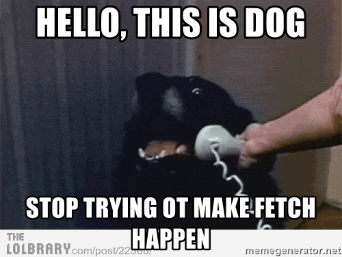 Hello This Is Dog Stop Trying Ot Make Fetch Happen Hello This Is