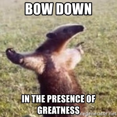 39970982 bow down in the presence of greatness fuck you, i'm an anteater,Get Bow Down Meme