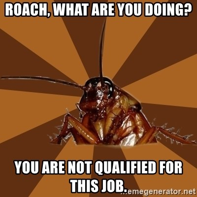 what job am i qualified for