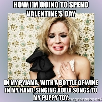 How Iu0027m Going To Spend Valentineu0027s Day In My Pyjama, With A Bottle Of Wine  In My Hand, Singing Adele Songs To My Puppy Toy.   Crying Girl | Meme  Generator