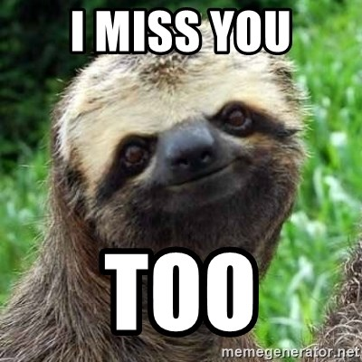 52484188 i miss you too sarcastic sloth meme generator