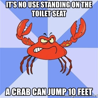 Brilliant Its No Use Standing On The Toilet Seat A Crab Can Jump 10 Lamtechconsult Wood Chair Design Ideas Lamtechconsultcom