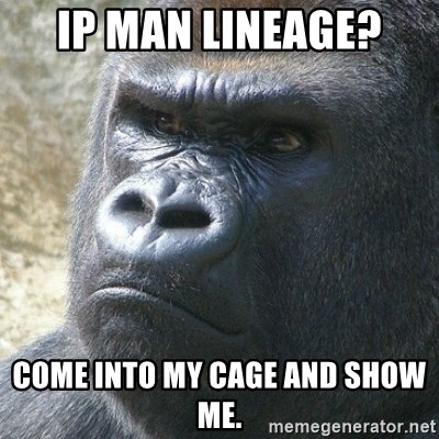 Ip Man lineage? Come into my cage and show me  - angry gorilla