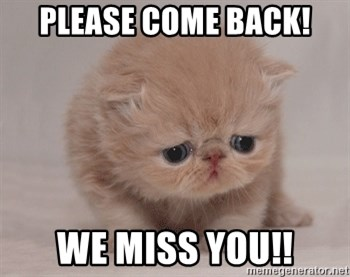 68983723 please come back! we miss you!! sadcat meme generator,We Miss You Meme