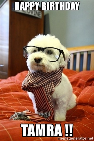 Happy Birthday Tamra Hipster Dog Meme Generator