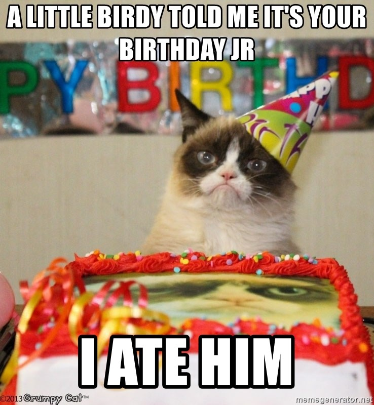 Grumpy Cat Birthday hat - A LITTLE BIRDY TOLD ME IT'S YOUR BIRTHDAY JR I ATE HIM