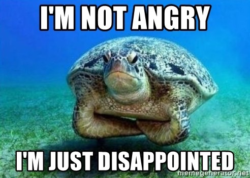 disappointed turtle - I'm not angry i'm just disappointed