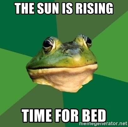 Foul Bachelor Frog - The sun is rising time for bed