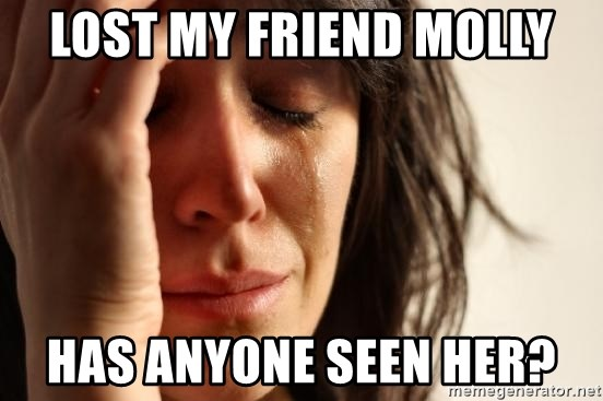 First World Problems - Lost my friend molly Has anyone seen her?