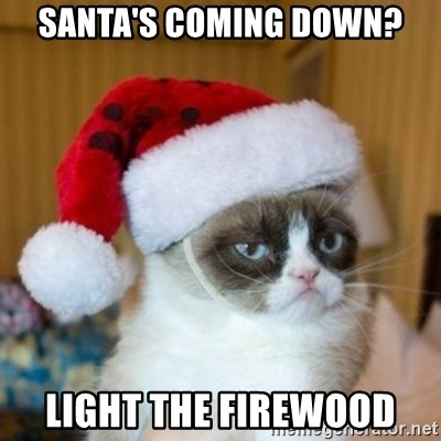 Grumpy Cat Santa Hat - santa's coming down? light the firewood