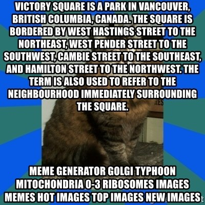 AMBER DTES VANCOUVER - Victory Square is a park in Vancouver, British Columbia, Canada. The square is bordered by West Hastings Street to the northeast, West Pender Street to the southwest, Cambie Street to the southeast, and Hamilton Street to the northwest. The term is also used to refer to the neighbourhood immediately surrounding the square. Meme Generator golgi typhoon mitochondria 0-3 ribosomes Images Memes Hot Images Top Images New Images