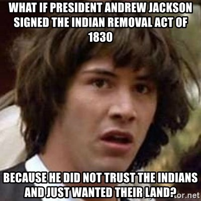 Indian Removal Act Andrew Jackson what if president andrew jackson signed the indian removal act of