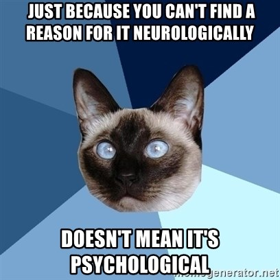 Chronic Illness Cat -  Just because you can't find a reason for it neurologically doesn't mean it's psychological