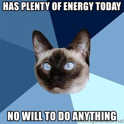 Chronic Illness Cat - Has plenty of energy today no will to do anything
