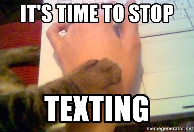 It's time to stop texting - It's time to stop cat   Meme